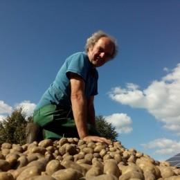 Die Frühkartoffeln sind gepflanzt!